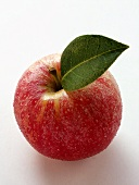 Red apple with stalk, leaf and drops of water