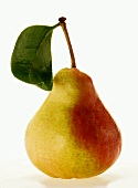 Pear with stalk and leaf