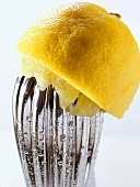 Squeezed lemon on lemon squeezer