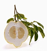 Half a lemon with twig and leaves