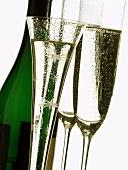 Champagne glasses, festive champagne flute & champagne bottle