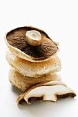 Portobello mushrooms (caps) in a pile and sliced