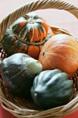 Various squashes in basket