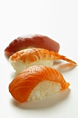 Nigiri sushi with salmon, shrimp and tuna