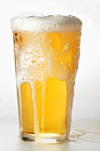 Light beer frothing over in a glass