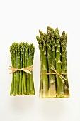 Different types of green asparagus in bundles