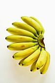 A bunch of mini-bananas