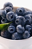 Fresh blueberries with leaf in bowl