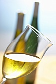 Glass of white wine, held at an angle, in front of two bottles