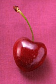 A red heart cherry on pink background