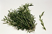 A bunch and a sprig of fresh rosemary