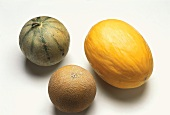 Charentais melon, honeydew melon and Galia melon