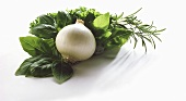Fresh herbs and white onion