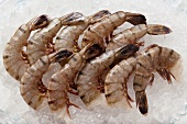 Several king prawns without heads on ice