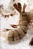 King prawns without heads on ice