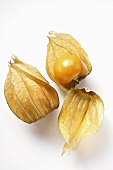 Physalis with and without calyx