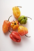 Various chili peppers on white background