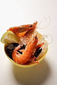 Shrimps and mussels in bowl with ice cubes