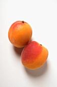 Zwei Aprikosen