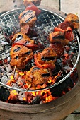 Spicy pork kebabs on the barbecue