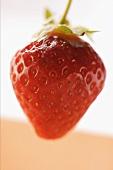 Eine reife Erdbeere