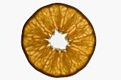 Slice of mandarin, backlit