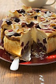 Cheesecake with cherries and coconut shavings, pieces cut