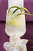 Refreshing cucumber drink with ice cubes