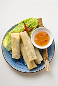 Spring rolls with chili dip