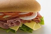 Ham, cheese, tomato and onion in sub sandwich
