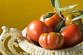 Fresh tomatoes in bowl with olive branch