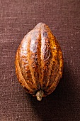Cacao pod on brown background