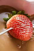 Chocolate fondue with strawberry on fondue fork
