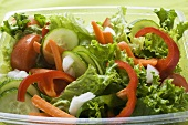 Salad leaves with cucumber, tomato, carrots, peppers to take away