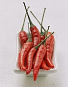 Several Red Chili Peppers