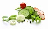 Salad ingredients: onion, leek, cucumber and radishes