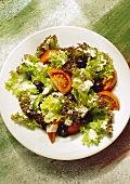 Leaf Lettuce with Special Dressing