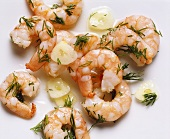 Shrimp with Dill and Garlic in Olive Oil