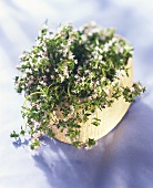 Thyme with flowers in a basket