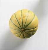 A charentais melon