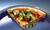 Piece of pizza in a pizza tray
