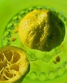 Lemon in citrus squeezer