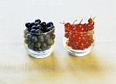 Blueberries and redcurrants in two separate glasses