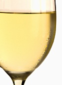 White wine glass with condensation (close-up)