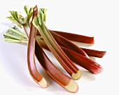 Several sticks of rhubarb