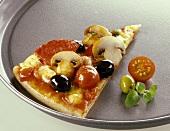 Ein Stück Salamipizza in einem Pizzabblech