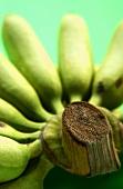 Mini bananas (close-up)