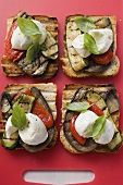 Vegetables and mozzarella on slices of grilled bread
