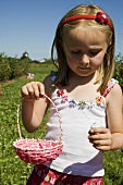 Small girl picking flowers in a meadow