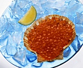 Salmon caviar in scallop shell on ice